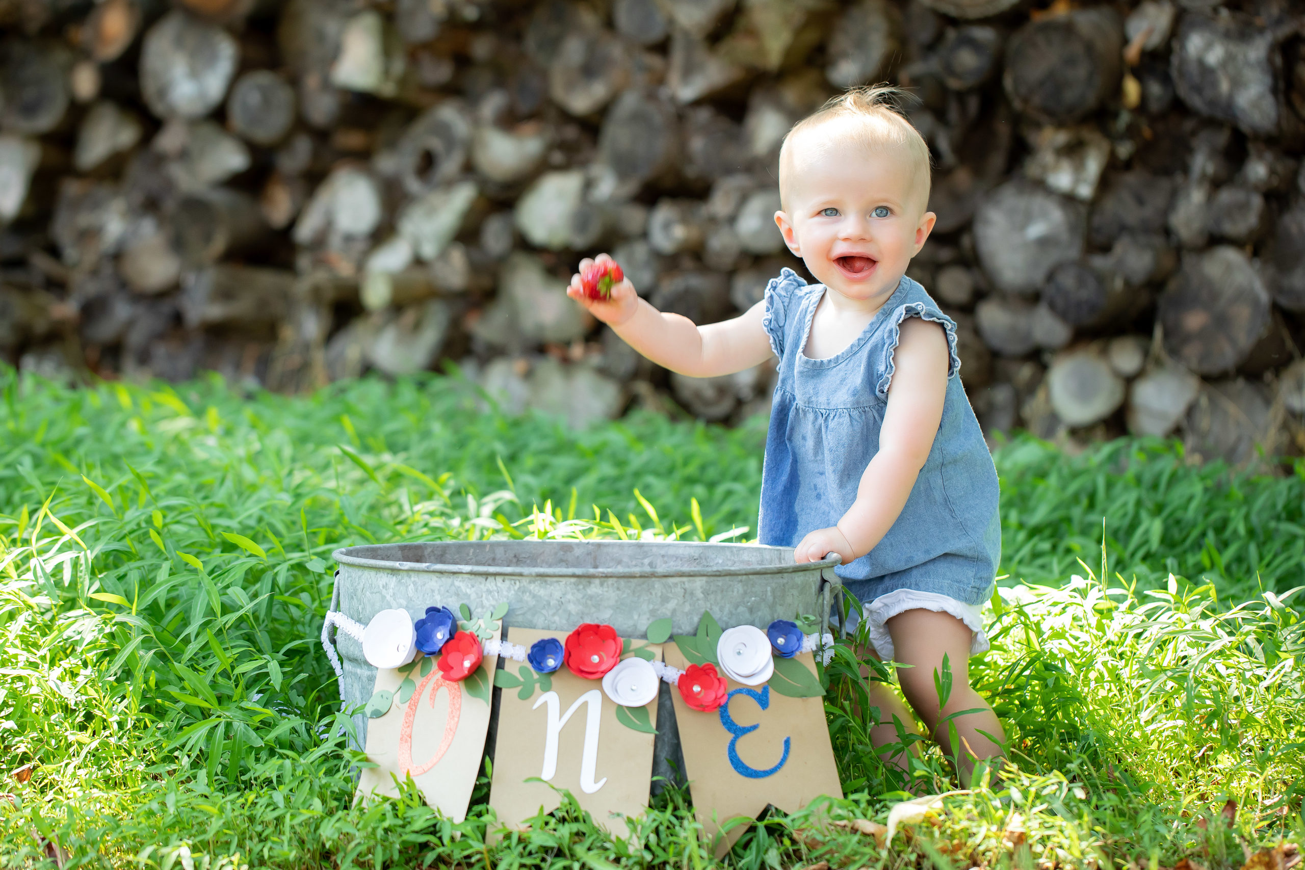 outdoor toddler and baby photography