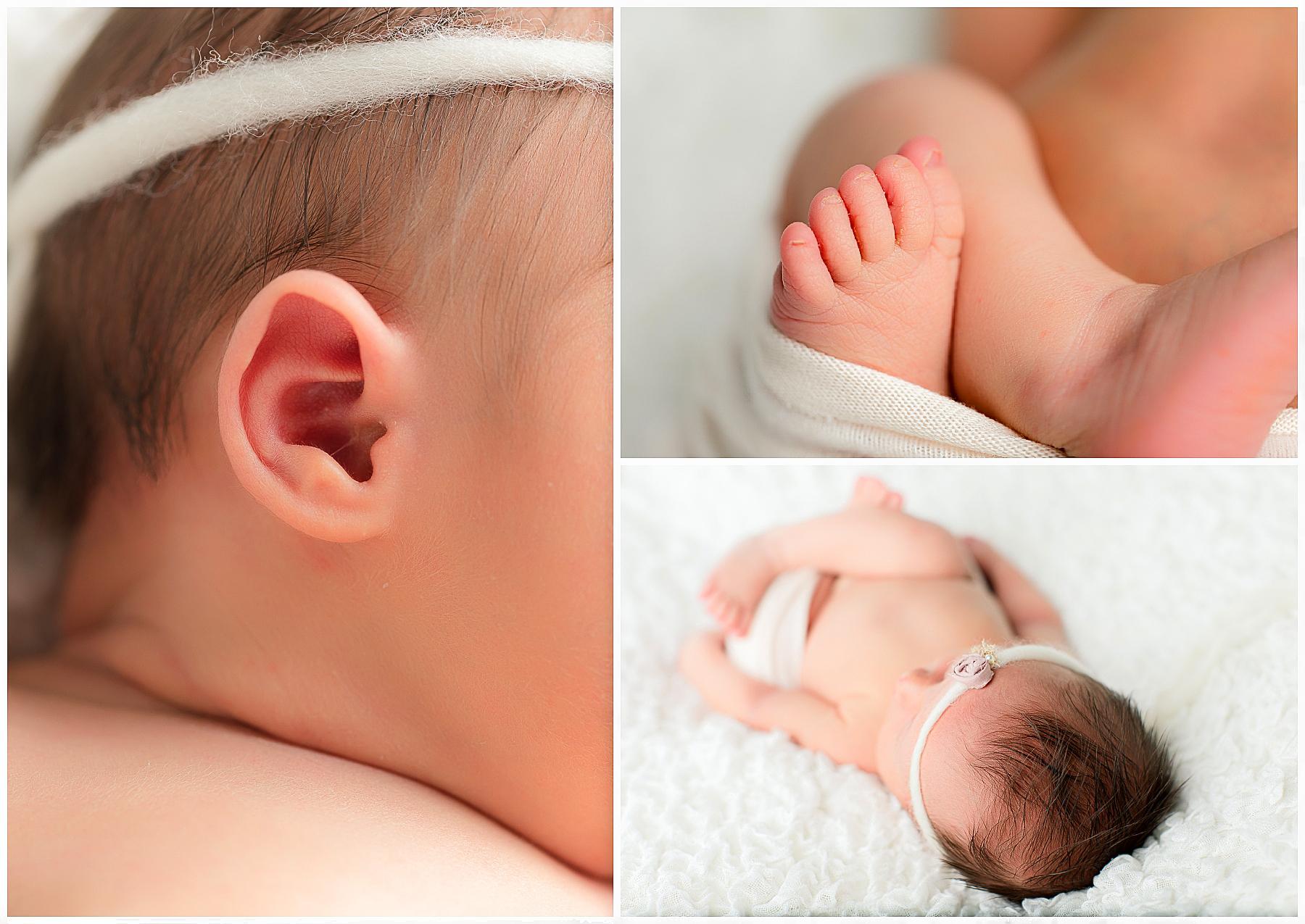 Newborn Photos Berks County PA_0003.jpg
